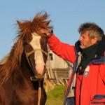 Рыжий конь