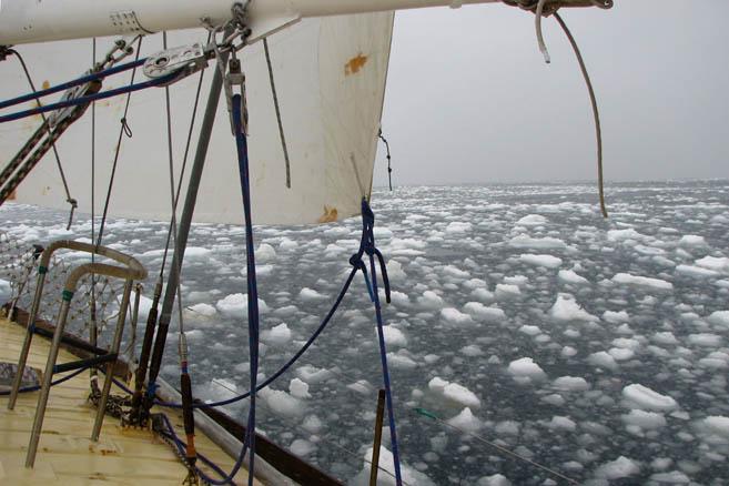 «Апостол» достиг кромки дрейфующих льдов. Дальше на юг дороги нет.
