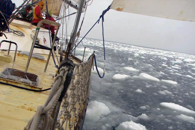 «Ледяное сало» – начальная стадия образования льда