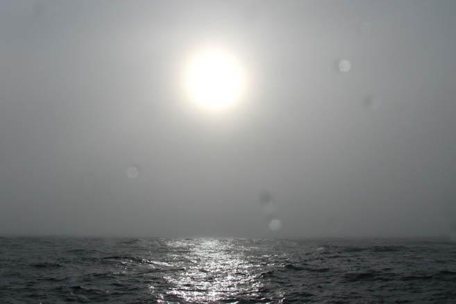 Солнце Южного океана