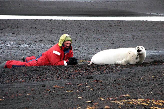 Руднев и тюлень