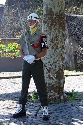 Страж порядка понта-делгадский