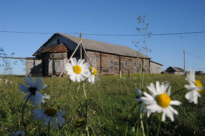 Деревня Устье близ Нарьян-Мара