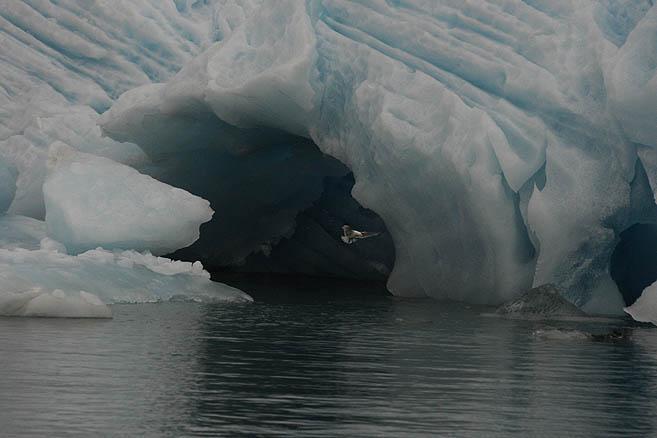 Ледяная земля