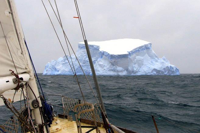 Первые айсберги