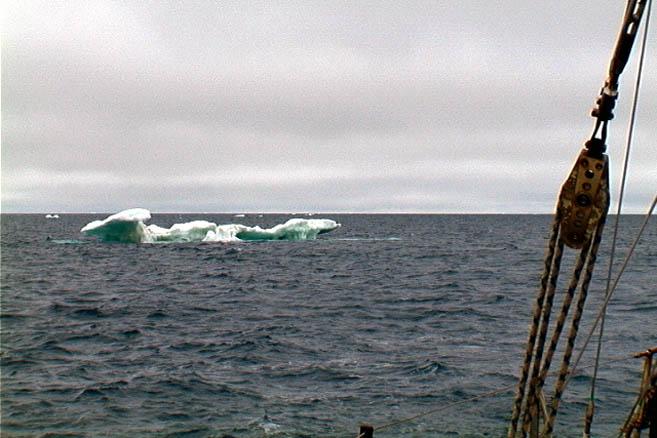 Первые американские айсберги