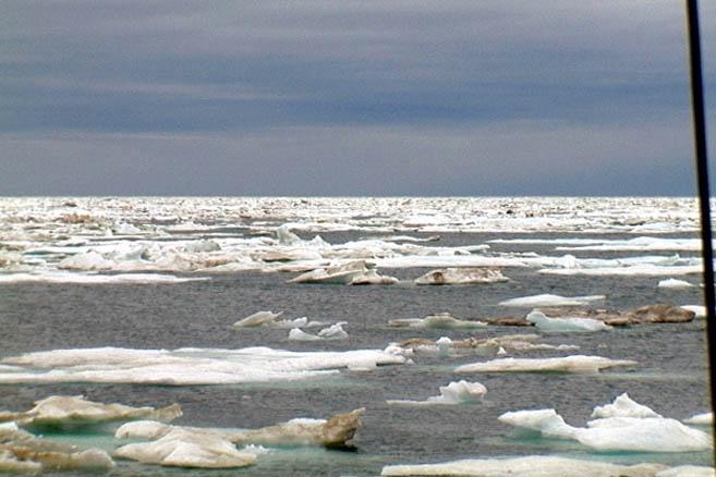 Но и выбора нет – придется пробиваться через эти льды
