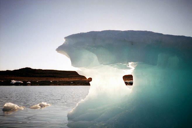 В бухте Депо много льдин неожиданной формы