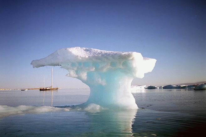 В бухте сидит на мели множество многолетних льдин
