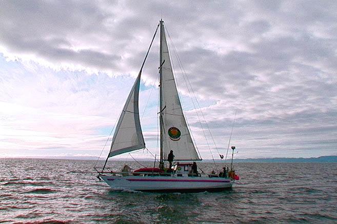 На Nuage подняли паруса и включили дизель