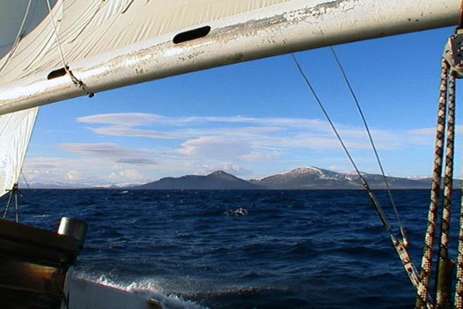 Море Баффина – яхта идет на юг