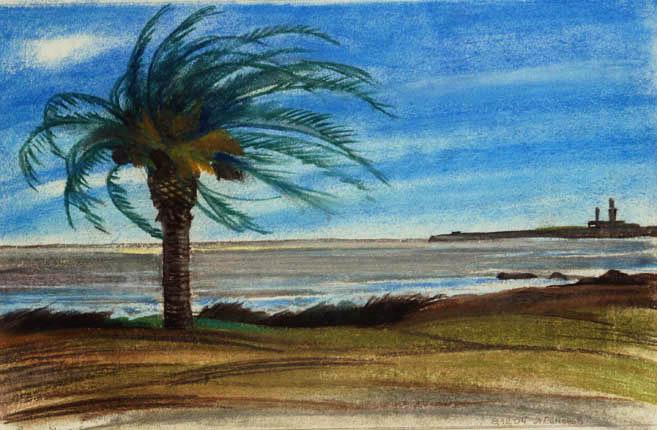 Тропический пляж. 2006 год