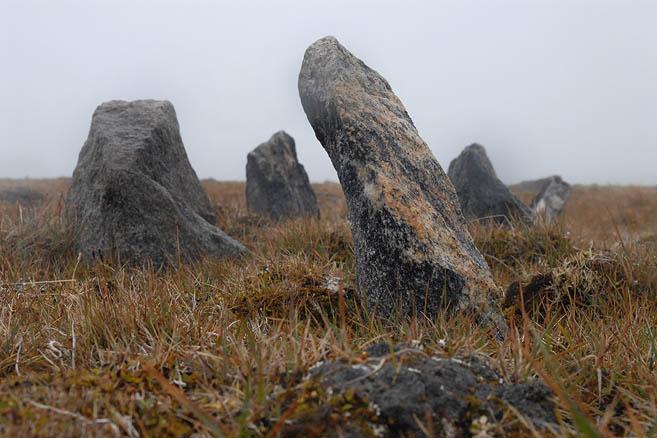 Таймырский сад камней