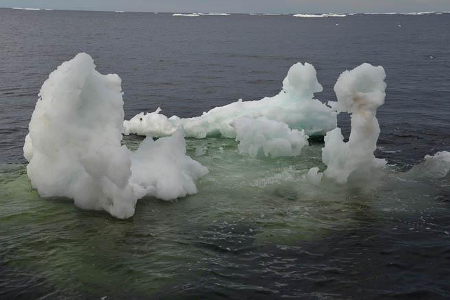 Первые льды
