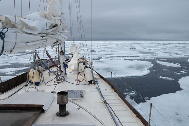 Августовский льды