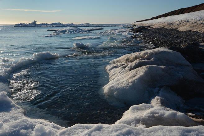 Остров Домашний, Северная Земля
