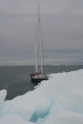 «Апостол» у мыса Арктического