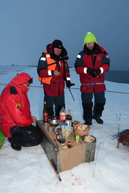 Арктический пикник