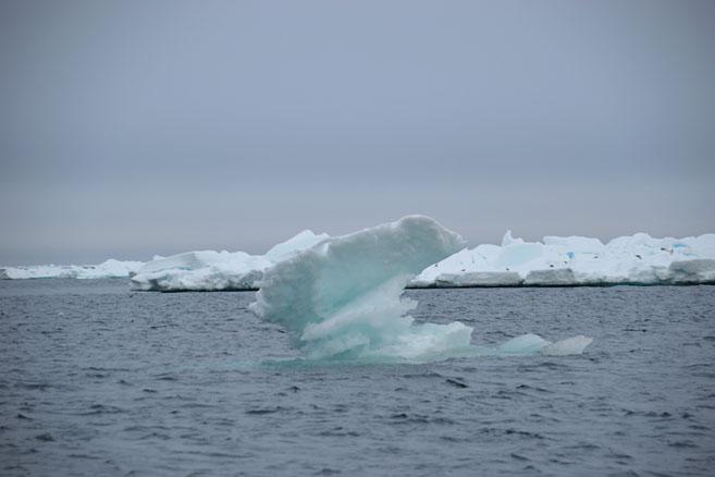 Но первые льды появились очень скоро