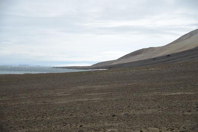 Арктические пляжи острова Галля