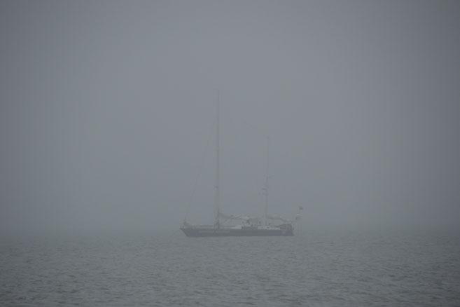 «Апостол» в тумане