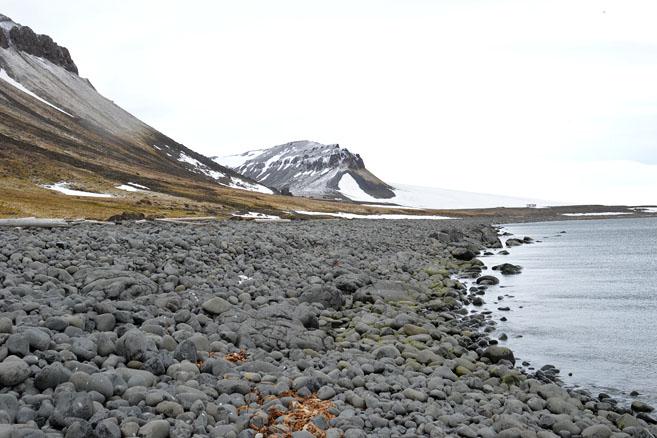 Остров Нортбрук