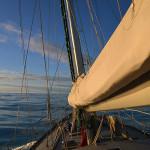 Лето Баренцева моря