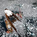 Пробка на антарктическом перекрестке.